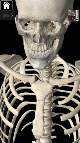 AnatomyApp