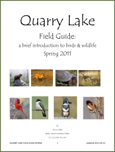 QUARRY LAKE FIELD GUIDE updated May 2011 - jpg