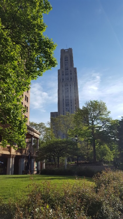 "The ""Cathedral of Learning"" at the University of Pittsburgh"