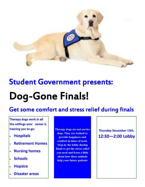 therapy-dog-flier